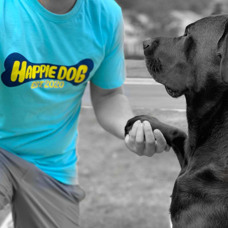happie dog products